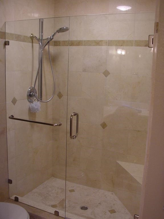 Shower Doors - Frameless shower door